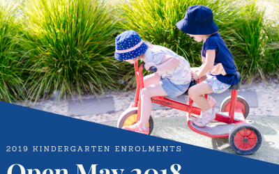 2019 Kindergarten Enrolments